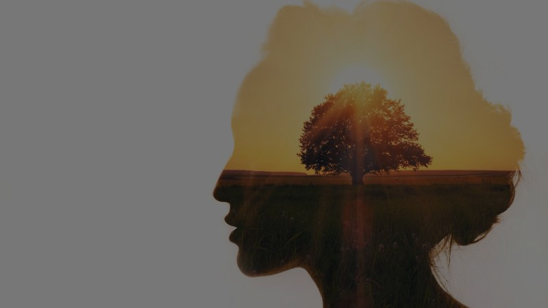 woman with a tree in her mind to represent personal development